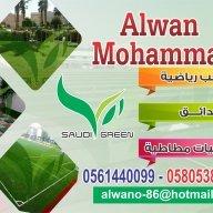 alwan mohammad